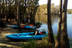 bluesprings_kayak_13